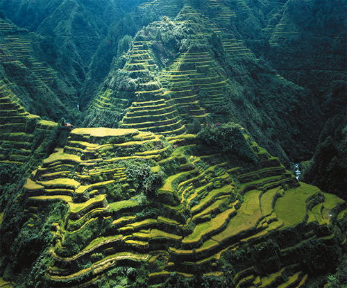 sustainable energy donated to save banaue rice terraces